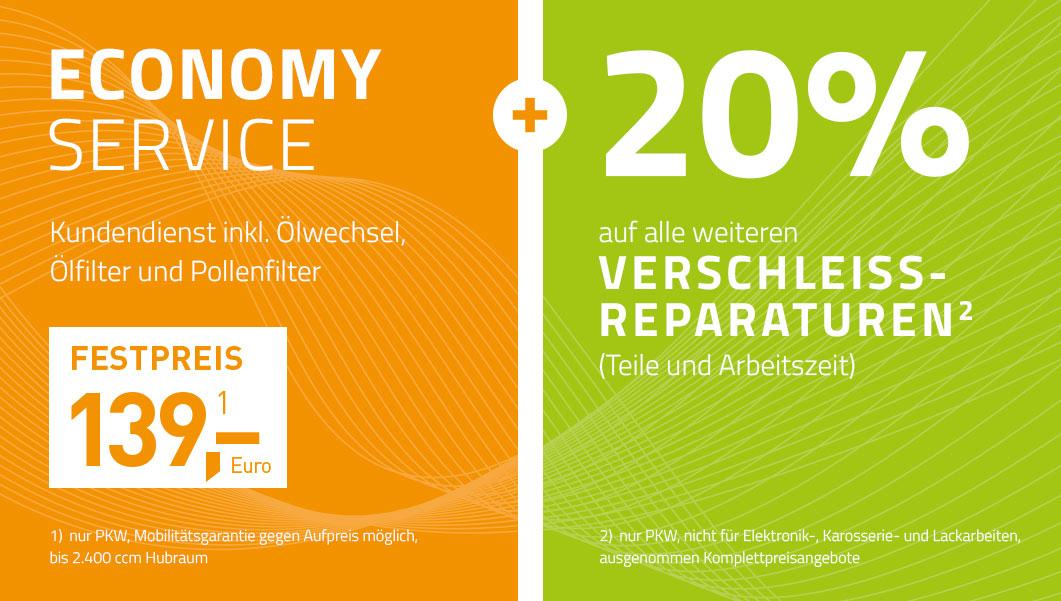 Economy Service - Kundendienst inkl. Ölwechsel, Ölfilter und Pollenfilter + 20% auf alle weiteren Verschleissreparaturen